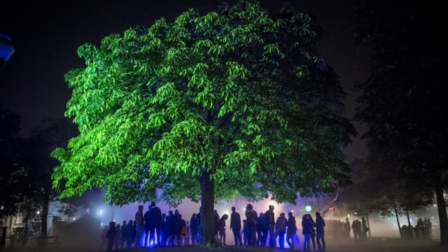 Radiant Tree by HeHe, Nuit Blanche 2015.  Photo © Benjamin Struelens ; courtesy of City of  Brussels